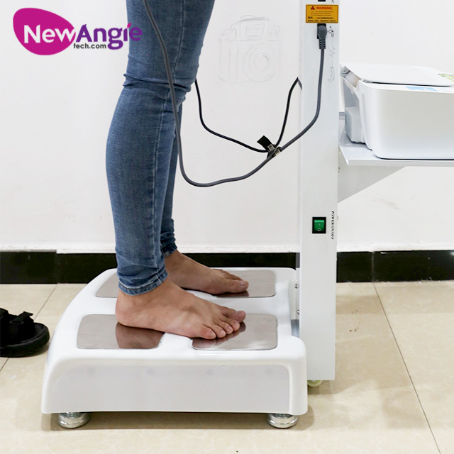 Cost-Effective Full Gs66b Measuring Professional Body Composition Analyzer Wireless